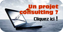 consulting stratégie NTIC